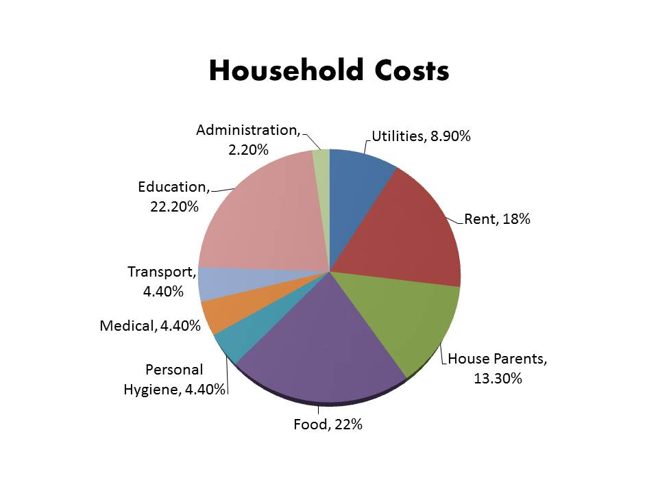 Project I AM Household Costs3